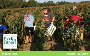 header waukon corn